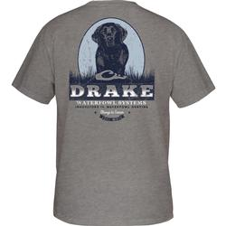 DRAKE BLACK LAB PORTRAIT S/S T GRAPHITE_HEATHER