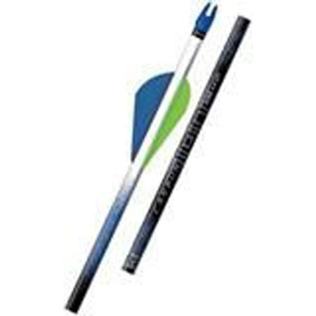 EASTON CARBON ION ARROW