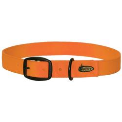 AVERY STANDARD DOG COLLAR BLAZE_ORANGE