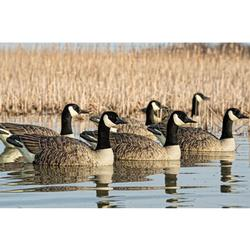 AVIAN-X TOP FLIGHT HONKERS FLOATERS