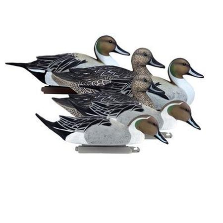 HIGDON BATTLESHIP PINTAILS