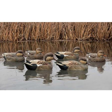 AVIAN-X TOP FLIGHT GADWALL