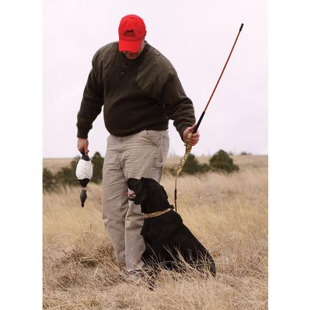 AVERY TRAINER`S HEELING STICK